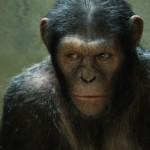 rise-planet-apes-tittle
