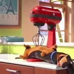 La-Vida-Secreta-de-las-Mascotas