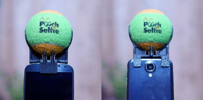 pooch-selfie-2