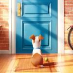 la-vida-secreta-de-las-mascotas-poster-title