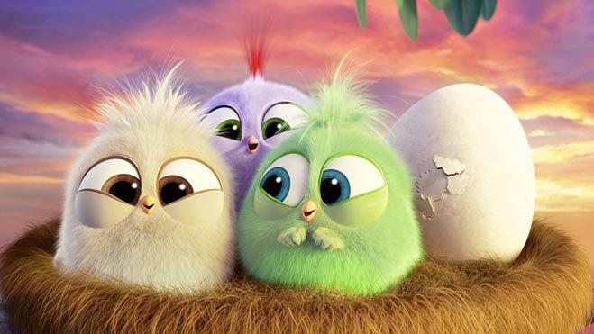 polluelos-angry-birds-dia-de-la-madre